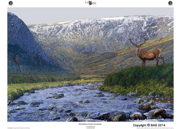wildlife art,wildlife art paintings,wildlife art for conservation,bas,art of bas,alladale wilderness lodge and reserve,the real monarch of the glen,canvas prints,bbc scotland,bbc,bbc 2,alladale,mike birkhead,scottish highlands,scotland,wildlife, monarch of glen alladale,red deer,stag,conservation,art print,limited edition art,oil painting,moose,elk,wild boar,