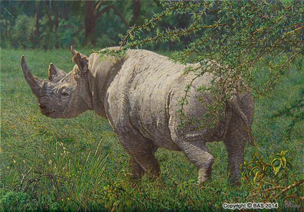 black rhino painting;oil painting;bas;the art of bas;nakuru;kenya