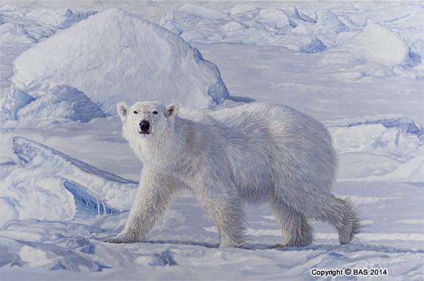 Polar Bear painting;Polar Bear oil painting;Polar Bear;Arctic;BAS;The Art of BAS