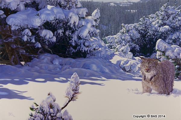 lynx painting,lynx oil painting,big cat painting,bas,art of bas,wildlife art,wildlife painting,oil painting,snow painting