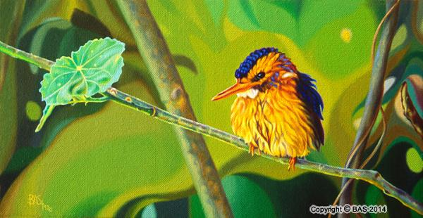 wildlife art,wildlife art paintings,bas,art of bas,oil painting,Kingfisher Oil Painting,Masai Mara Kenya,robert browning,pygmy kingfisher,canvas
